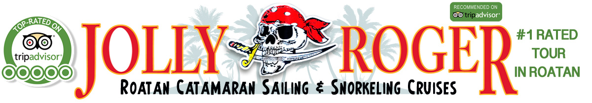 Jolly Roger Roatan - Catamaran Sailing & Snorkeling Cruises with Lunch